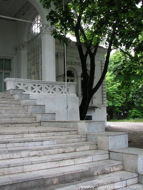 Дача Ашкенази. Парковый фасад. Главная лестница.