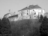 Олесский замок200х150