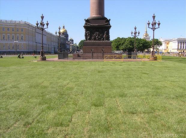 луг на Дворцовой площади.