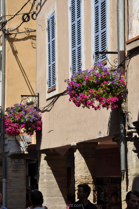 Carpentras in flowers